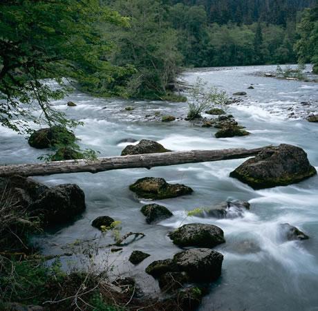 cancao do rio